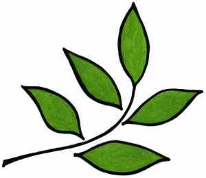 new_leaf_design__revised__logo_13-1-06